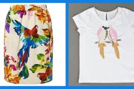 blog mumandmimi parrot