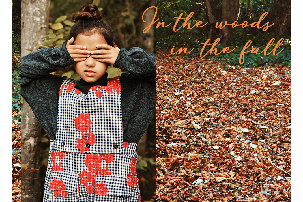 In the Woods, in the Fall