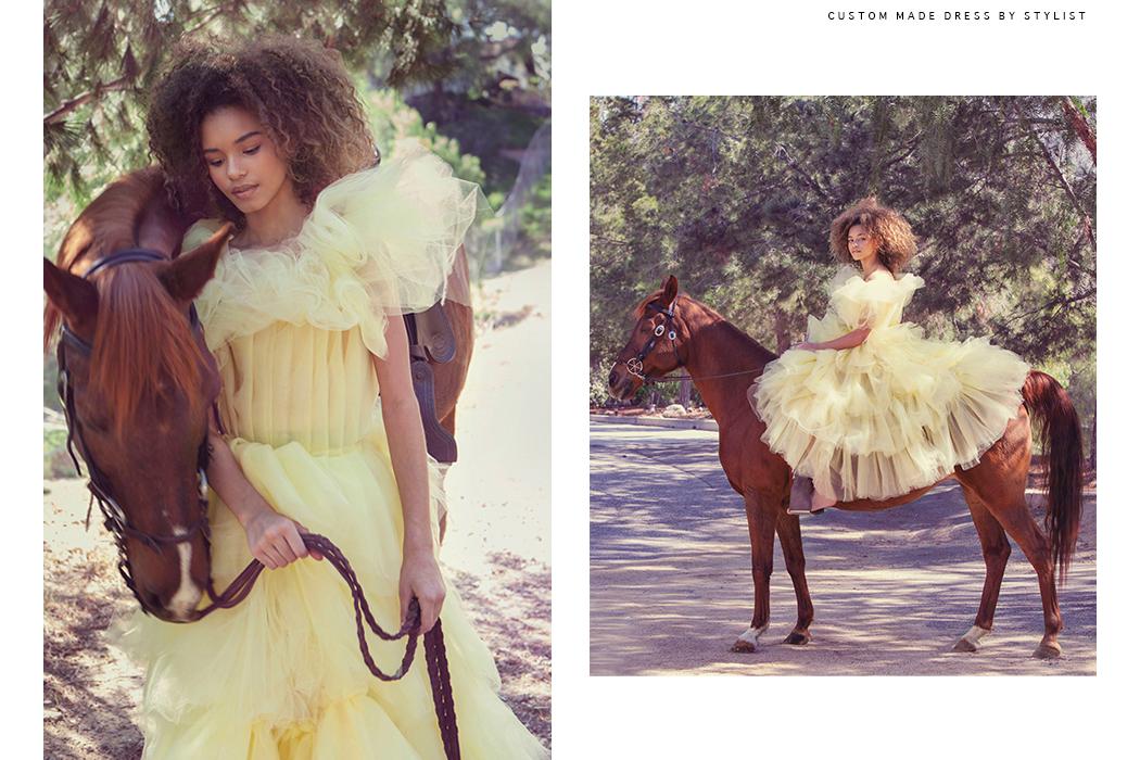 Editorial: Accidental Cowgirl by Sarvey Tahmasebi Rector