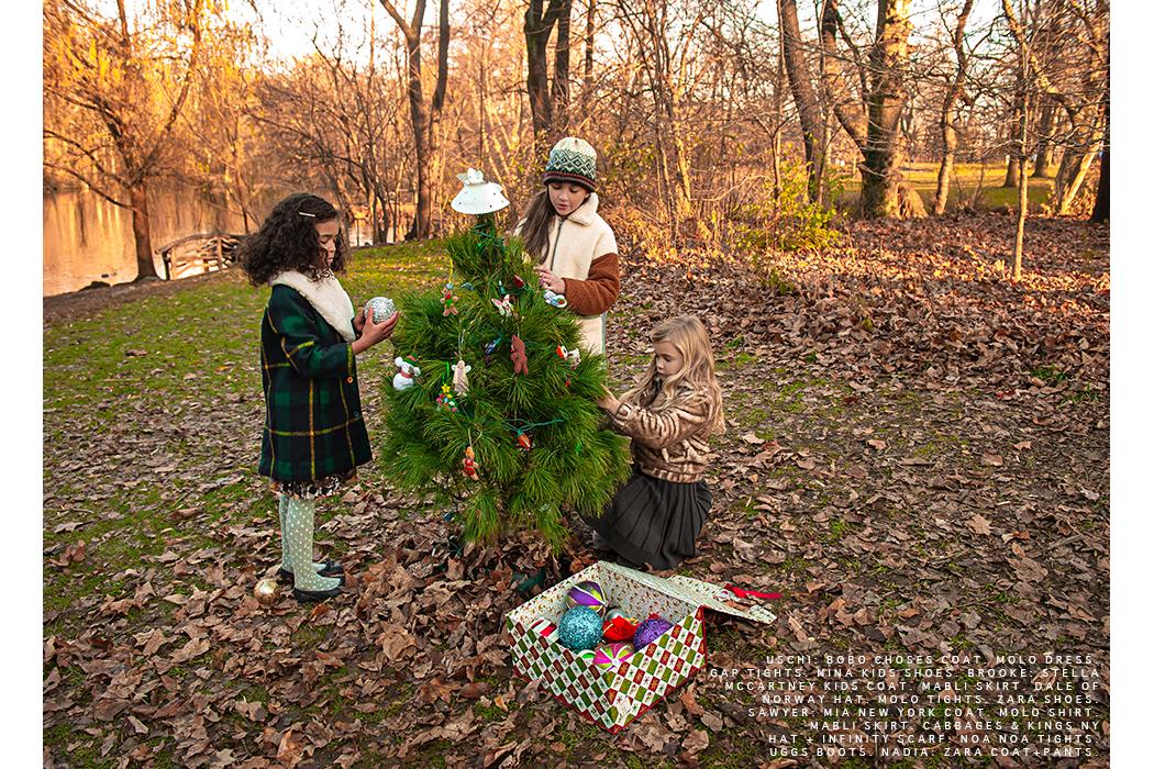 Editorial: Our Secret Christmas Garden by David Butterman